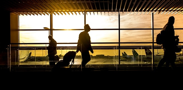 How To Fly with a Dog: A Guide for Travelling with a PSD, ESA or Pet - ESADoctors