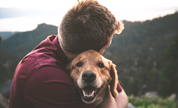 Dogs and other animals can improve mental health in people who suffer from depression, anxiety, PTSD, etc.