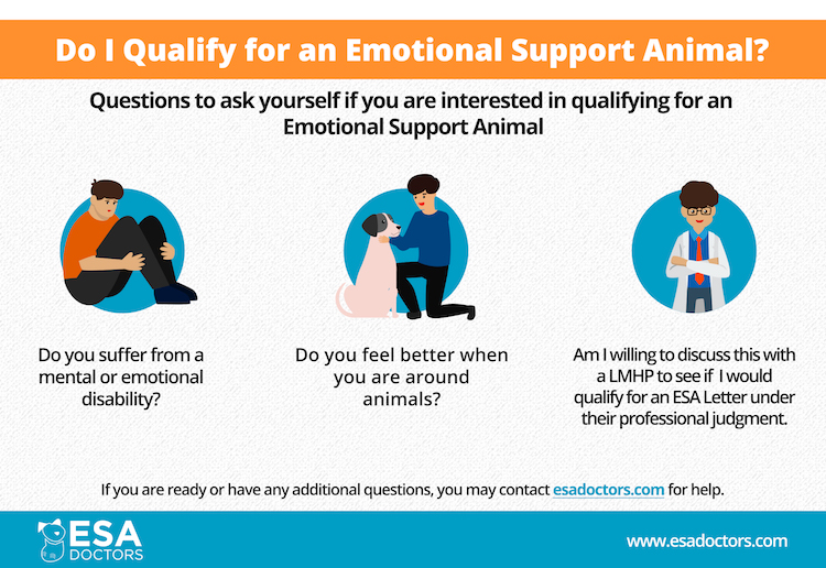 Do I qualify for an emotional support animal infographic