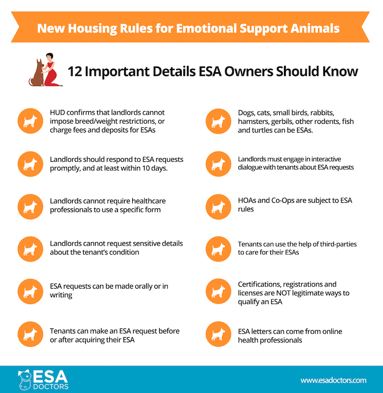 12 Important Facts ESA Owners Need to Know about the new U.S. Department of Housing Rules