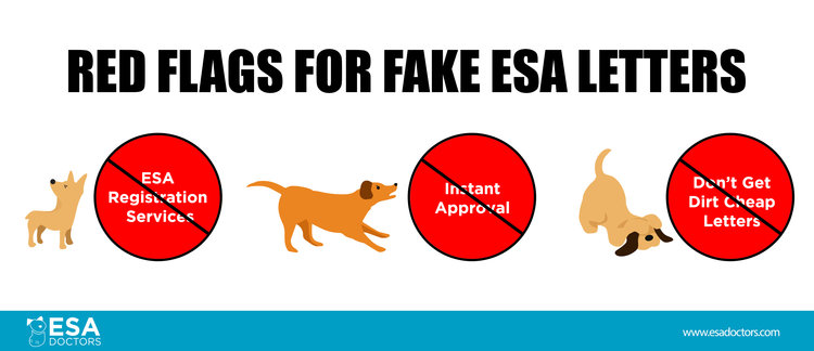 Red flags for scam esa letters.