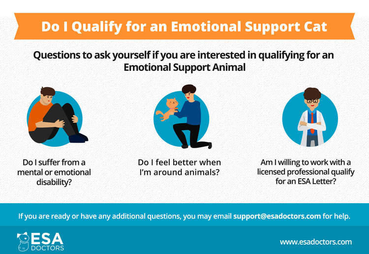 Do I qualify for an emotional support cat infographic.