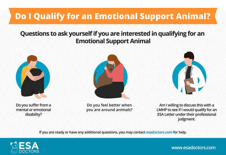 Qualifying for an emotional support animal.