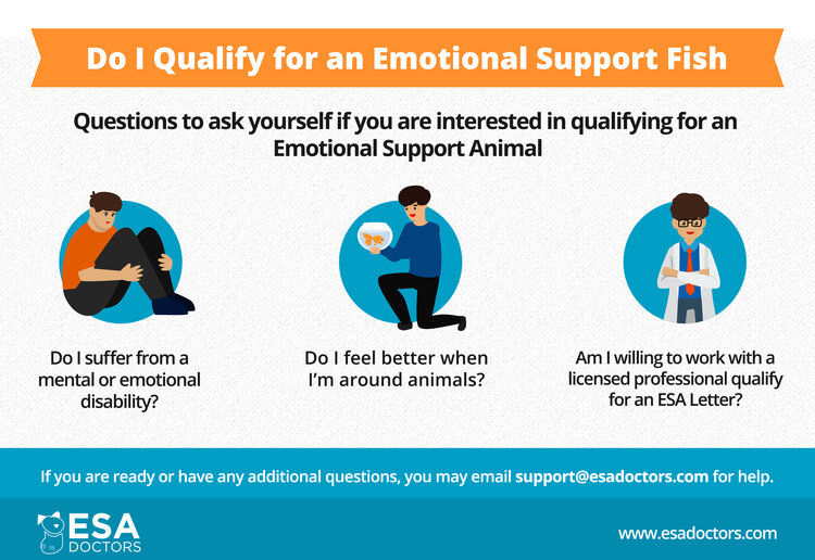 How to qualify for an emotional support animal fish.