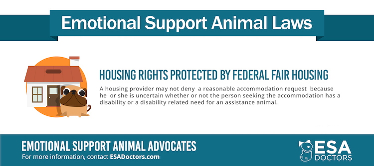 Emotional support animal laws infographic from ESADoctors.