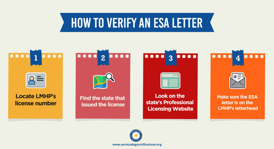 How to verify an ESA letter online infographic