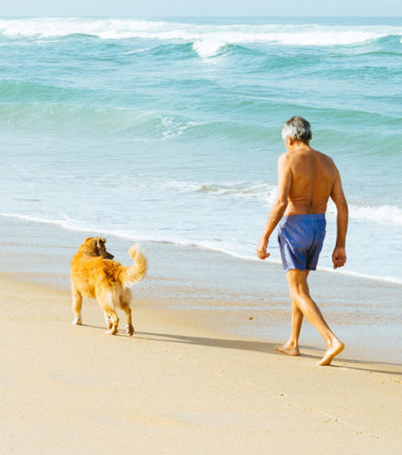 Senior citizen with service dog on beach.