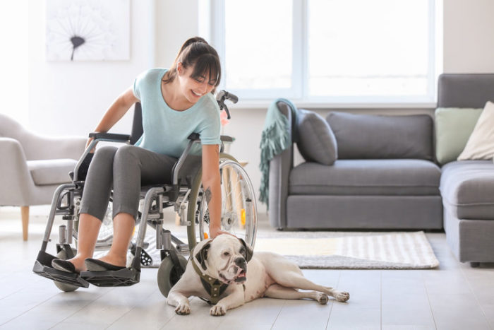 A disabled handler training the service dog