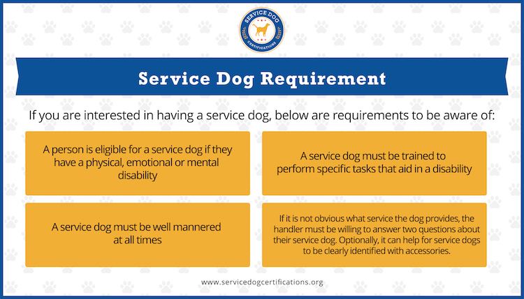 Service dog requirement list (Infographic)