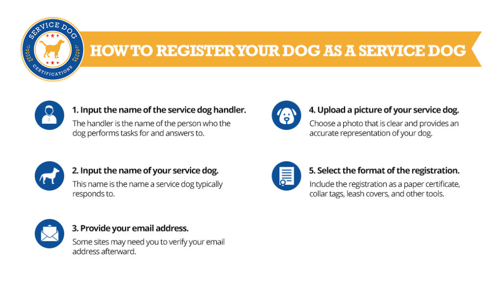 How to register your dog as a service dog (infographic) - Service Dog Registration