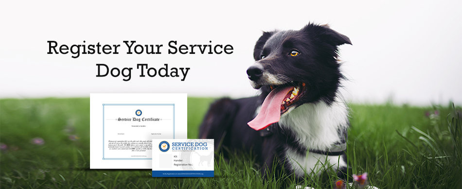service dog registration requirements banner
