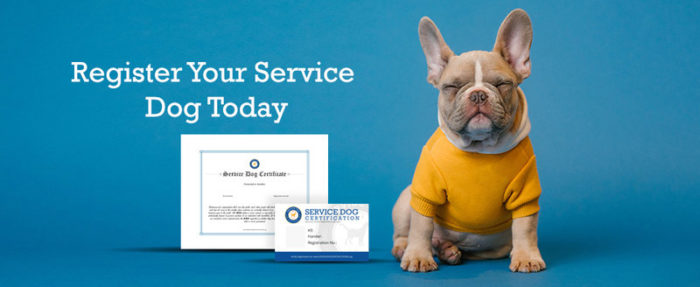 Service dog registration and certification